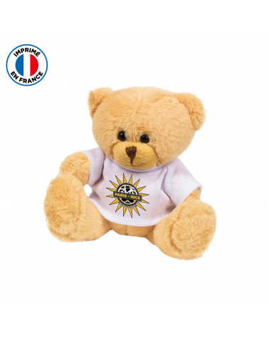 Teddy Bear Paris Nice Ourson